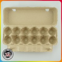 Molded Pulp Disposable Paper Egg Trays