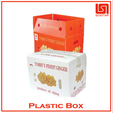 Hot sale high quality plastic clear fruit box manufacturer in china