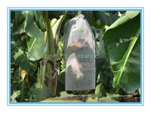 PP nonwoven cover bag for Banana cluster