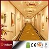 Beautiful 100%nylon wall to wall contract carpet