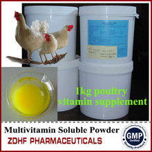 GMP camels /sheep/horse aid performance Vitamins and Electrolyte and Amino acids powder