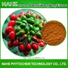 Health Supplement Ginsenoside Rb1 Panax Ginseng Berry Extract