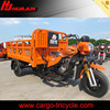 China promotional good performance gasoline motorized tricycle cargo