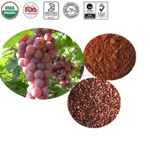 Natural Bulk Standardized OPC Grape Seed Extract 95%