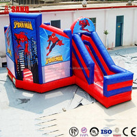 Theme Water Park Inflatable Water Slide Inflatable Water Park