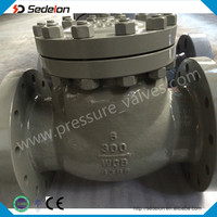 ASTM Cast Steel WCB A216WCB Flanged Ends Swing Check Valve