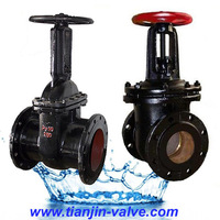 Cast iron gate valve 30ch6br integral r.fwelded flang gate valve