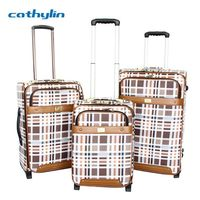 Trolley PU leather luggage case wine luggage carrier
