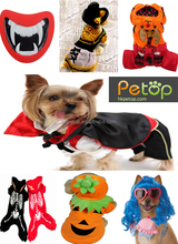 Factory Price Halloween Pet Clothes & Accessories