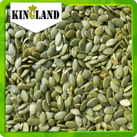 Shine skin best quality good price pumpkin seeds and kernels