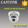 Low Price! 1080P Economical IR HD IP CCTV Dome Security Camera For Apartment Door