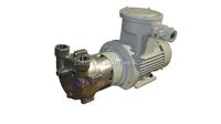 2BV2060-EX water ring pump (price)
