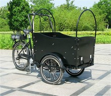 CE good quality 3 wheel electric cargo tricycle passenger 2015
