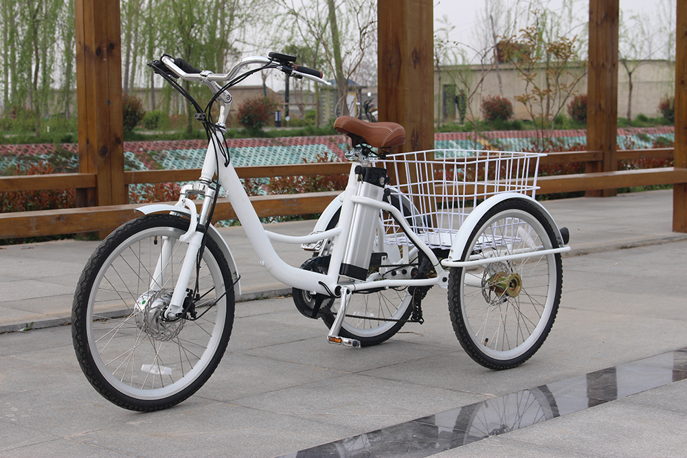Picture Of Real Adutl Tricycle Sample