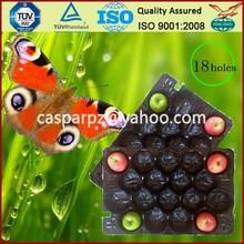 China Professional Manufacturer&Exporter Polypropylene Soft Alveolar Tray for Supermarket Display