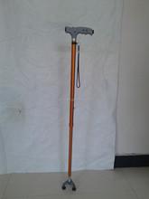 walking stick (elder)