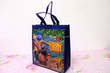 Laminated pp Non Woven Grocery Tote Bag