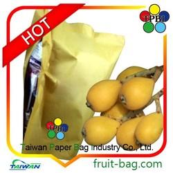 Loquat protection bag/fruit growing paper bag for loquat