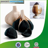 Health food, organic black garlic seeds extract powder with competitive price