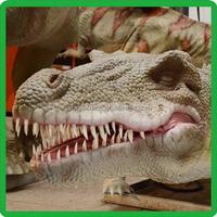 Patience low temperature crocodile animal model,crocodile figurine