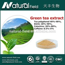 Advanced detecting instruments processing Competitive offer green tea extract 95%min