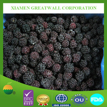 frozen blackberry with HACCP certification
