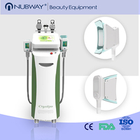 Hot sale professional cryolipolysis fat freezing machine (paypal accept)