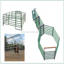 Hot Dipped Galvanized Fencing For Horses