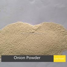 100mesh latest crop xinghua air dried onion powder