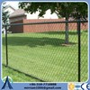 Hot-dipped Galvanized chain link fence netting (Factory Exporter)