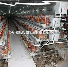 Layer Chicken Cage For Poultry Farm
