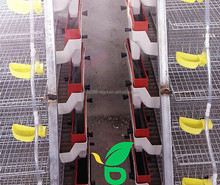 automatic water supply cage for quail prices sold to England