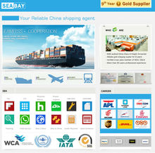 best professional in china sea freight forwarder service