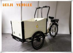 CE aluminum alloy family electric pedal 3 wheeler tuk