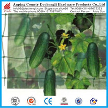extruded plastic pea and bean net / climbing plant support net