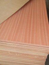 veneer/malamine/HPL faced fancy plywood