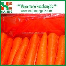 Crispy Sweet Fresh Carrots
