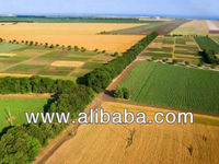Agricultural Land For Invest + UKRAINE