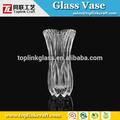 Pteris 20cm haut. martini vase en verre vases en verre géant