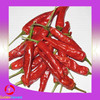 Hand-selected fresh red dry chilli flakes / dried chili