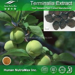 Terminalia Chebula Powder Extract 4:1 5:1 10:1 20:1