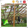 Plastic Bamboo Cane For Fence