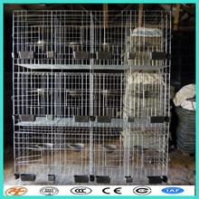 galvanized wire mesh panels for bird cage