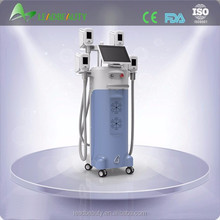 2015 new design body shaping vacuum slimming cryolipolysis machine