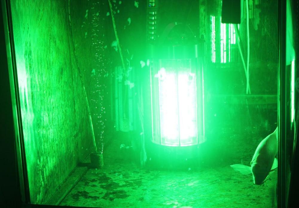 수중 낚시 램프 등불 네비게이션 조명 녹색 LED 낚시 빛 오징어 ...