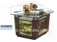 Hexagon table fish tank aquarium