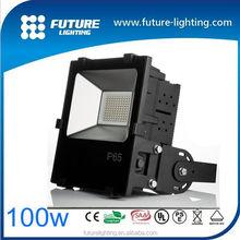 CE,RoHS,SAA,UL Certification IP65 IP 100W LED Portable Floodlight 3 Years Warranty
