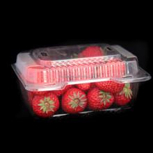 clamshell fruit packaging