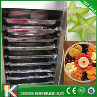electric fruit drying equipment/industrial vegetable and fruit drying equipment/fruit drying system
