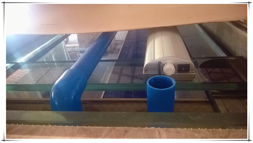 Made to order giant aquaculture fish tank ornamental fish for Ornamental fish tank